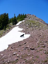 Upper East ridge of Cuberant Peak
