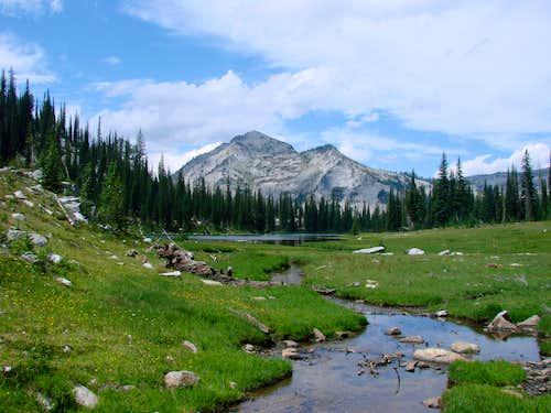 Inlet creek of Bear Lake