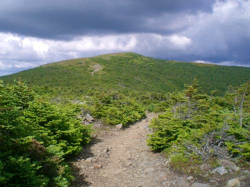 Moosilauke summit from Carriage Road