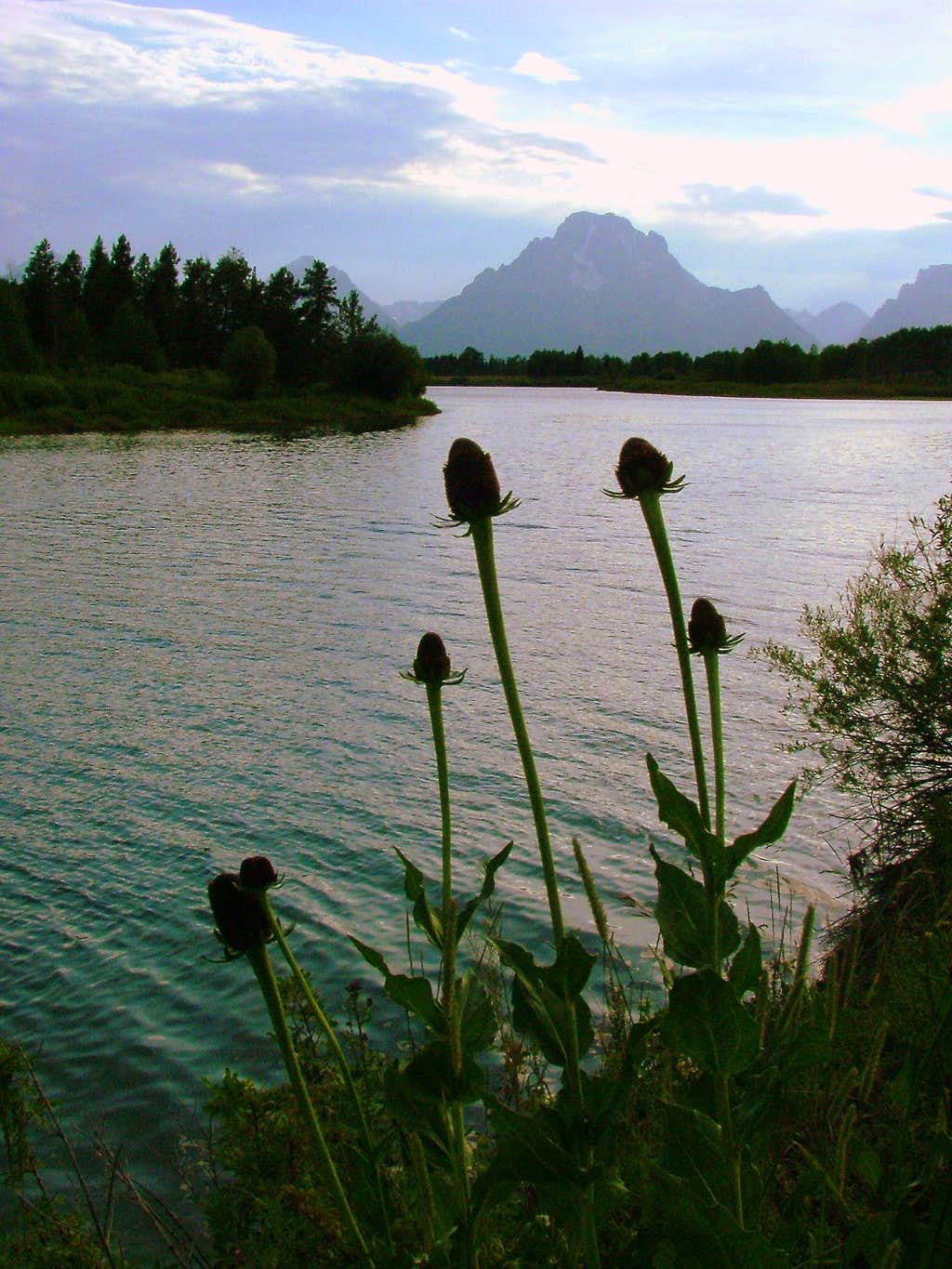 Grand Teton National Park Views.
