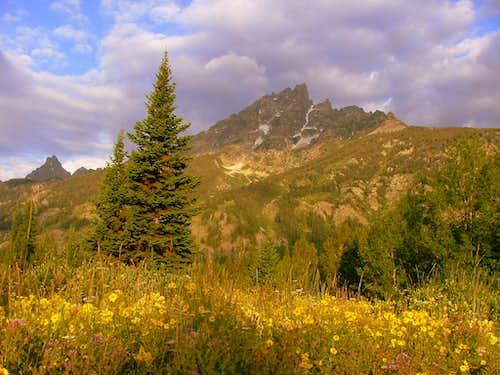 Grand Teton National Park Views.