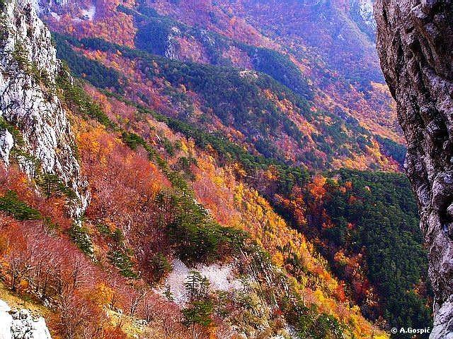 October carpet of colors