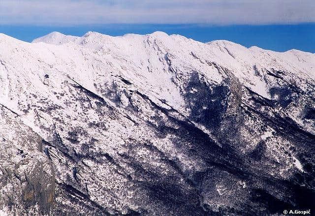 Liburnija (1710m) from Golic (1268m)