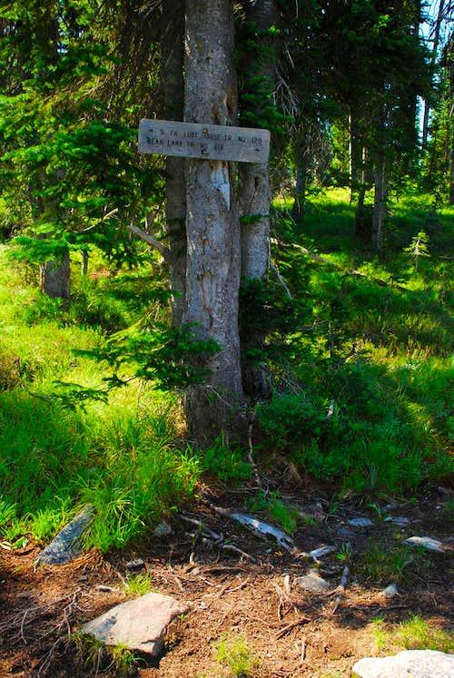 Trail 128