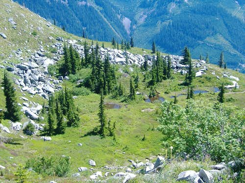Meadows & Tarns of Granite Mountain