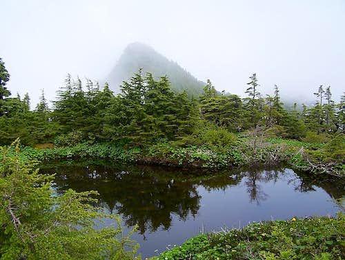 Muskeg Pond