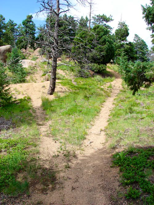 Summit Ridge Trails