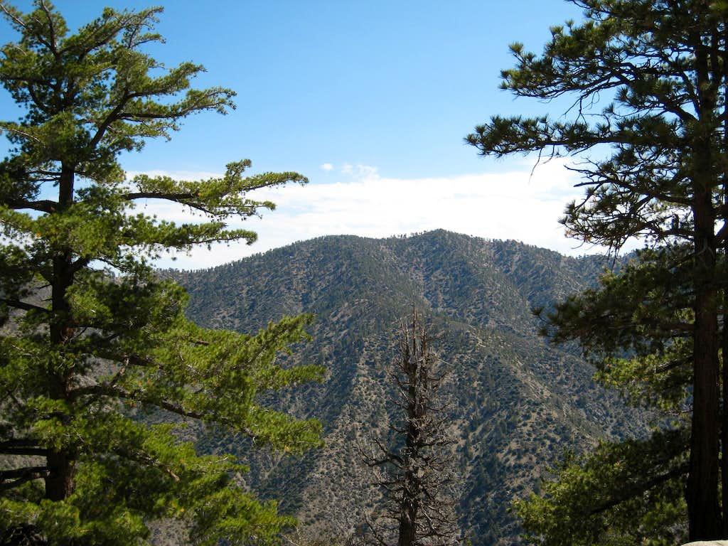 Pleasant View Ridge, San Gabriel Mtns.
