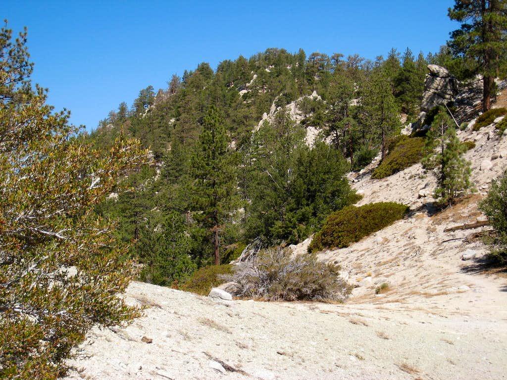 Winston Ridge (7,003'), San Gabriel Mtns.