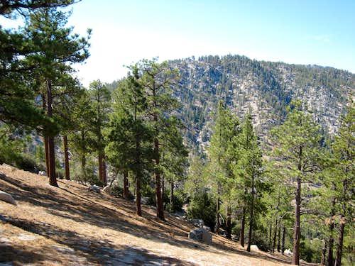 Winston Peak (7,502'), San Gabriel Mtns.