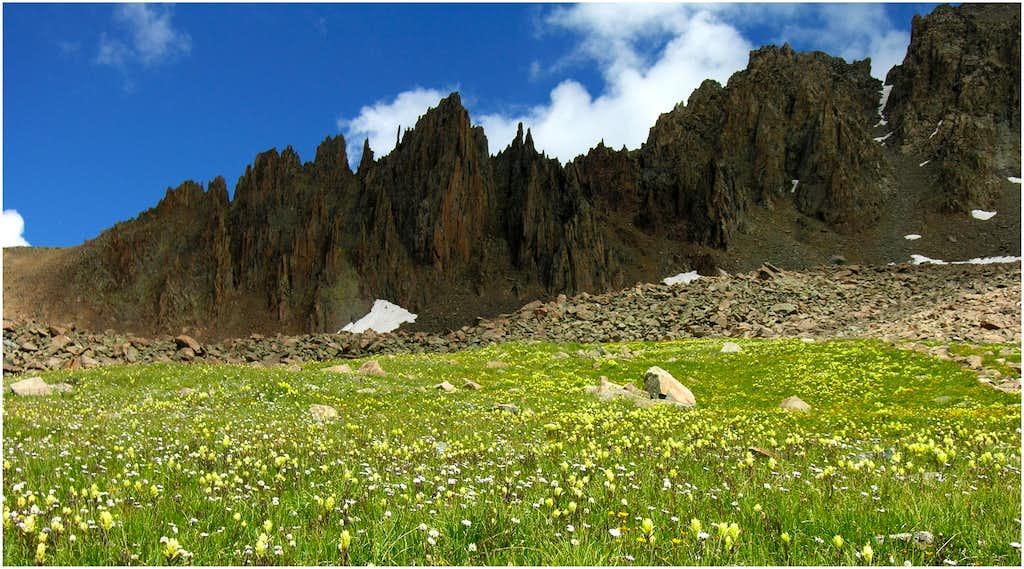 Mount Sneffles-Southwest Ridge
