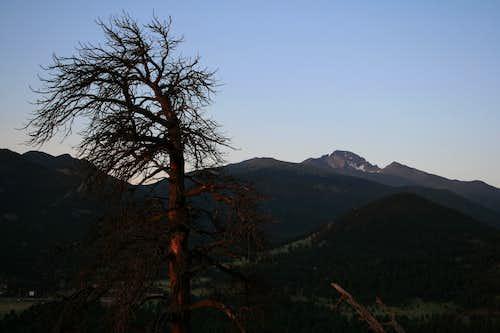 Longs Peak in Morning Light