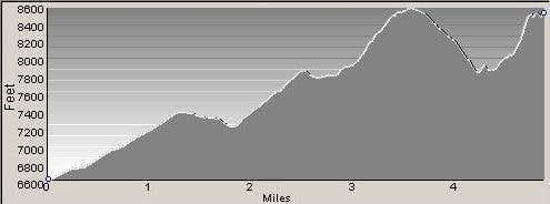 Ascent Profile