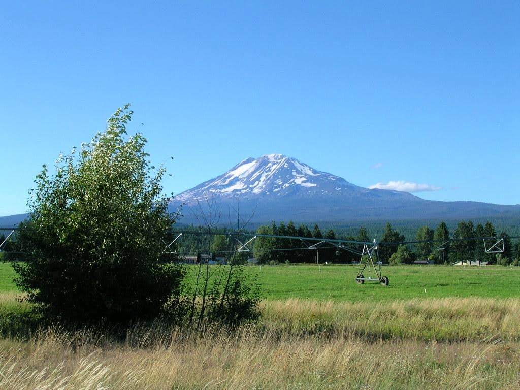 Mt. Adams from road 141