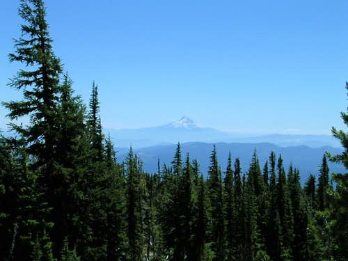 Mt. Hood as seen from the South Spur route up Mt. Adams
