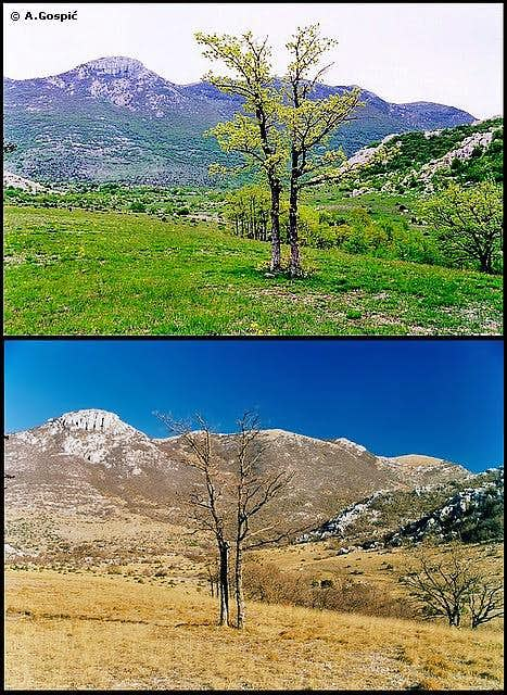 Pricatrnja Polje seasons