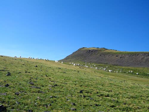 Delano Peak
