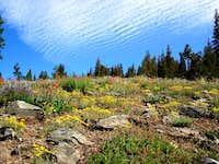 Slopes above Gilmore lake