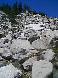 A random Rawah Peaks rockfield
