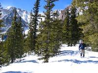 Elk Park Trail in winter