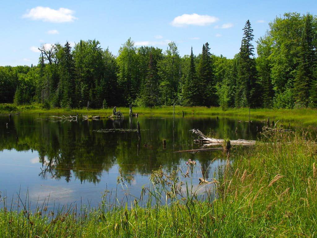 Pond on Mt. Arvon
