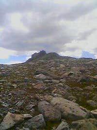 The terminus of Niwot Ridge