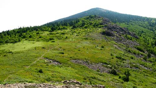 Northeast Alpine Peaks