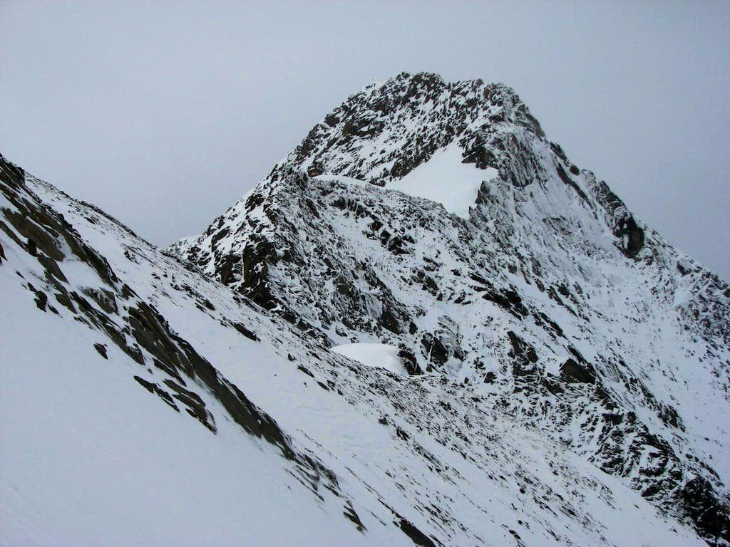 NE ridge of Roetspitze / Pizzo Rosso, 3495m.