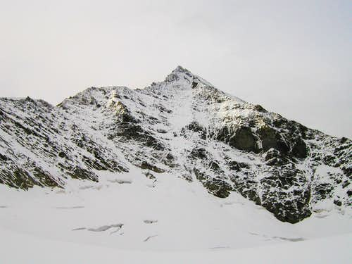 The north face of Roetspitze / Pizzo Rosso, 3495m.