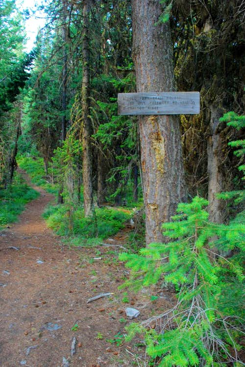 Lolo Peak Trail Sign