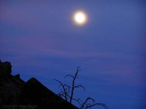 The Moon Glow