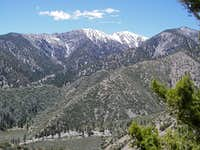 Mt. Baldy from the Northeast