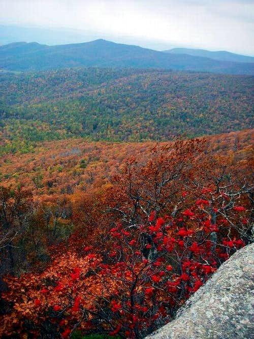 Pretty view from trail near summit.