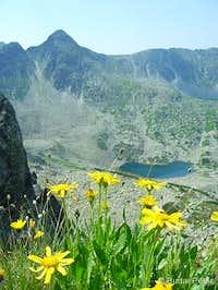 Ştirbu lake