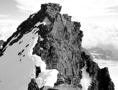 Rimpfischhorn summit