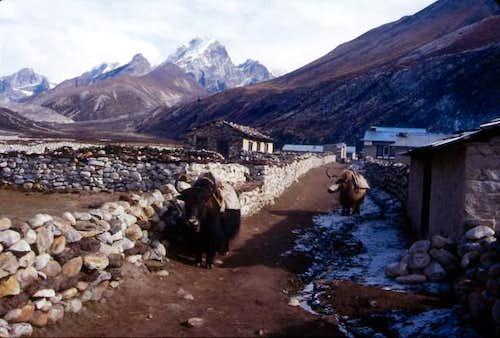Periche Village