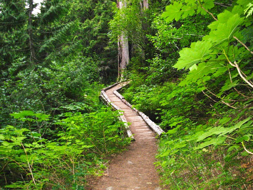 wooden path photos diagrams topos summitpost