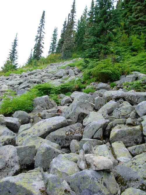 Lower Boulder Fields