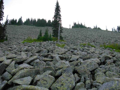Upper Boulder Field