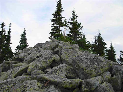 True Summit Of Pratt Mountain
