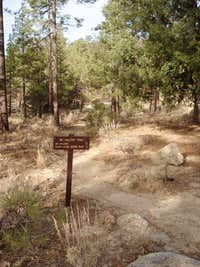 Mount Hillyer trailhead