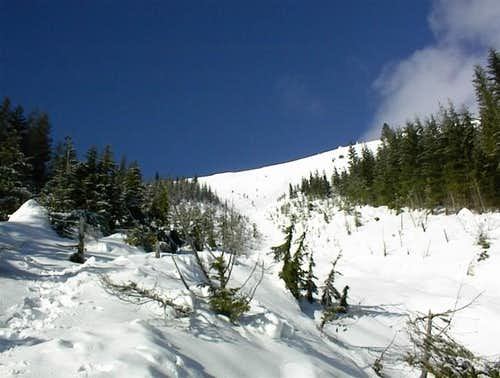 Avalanche Gulley