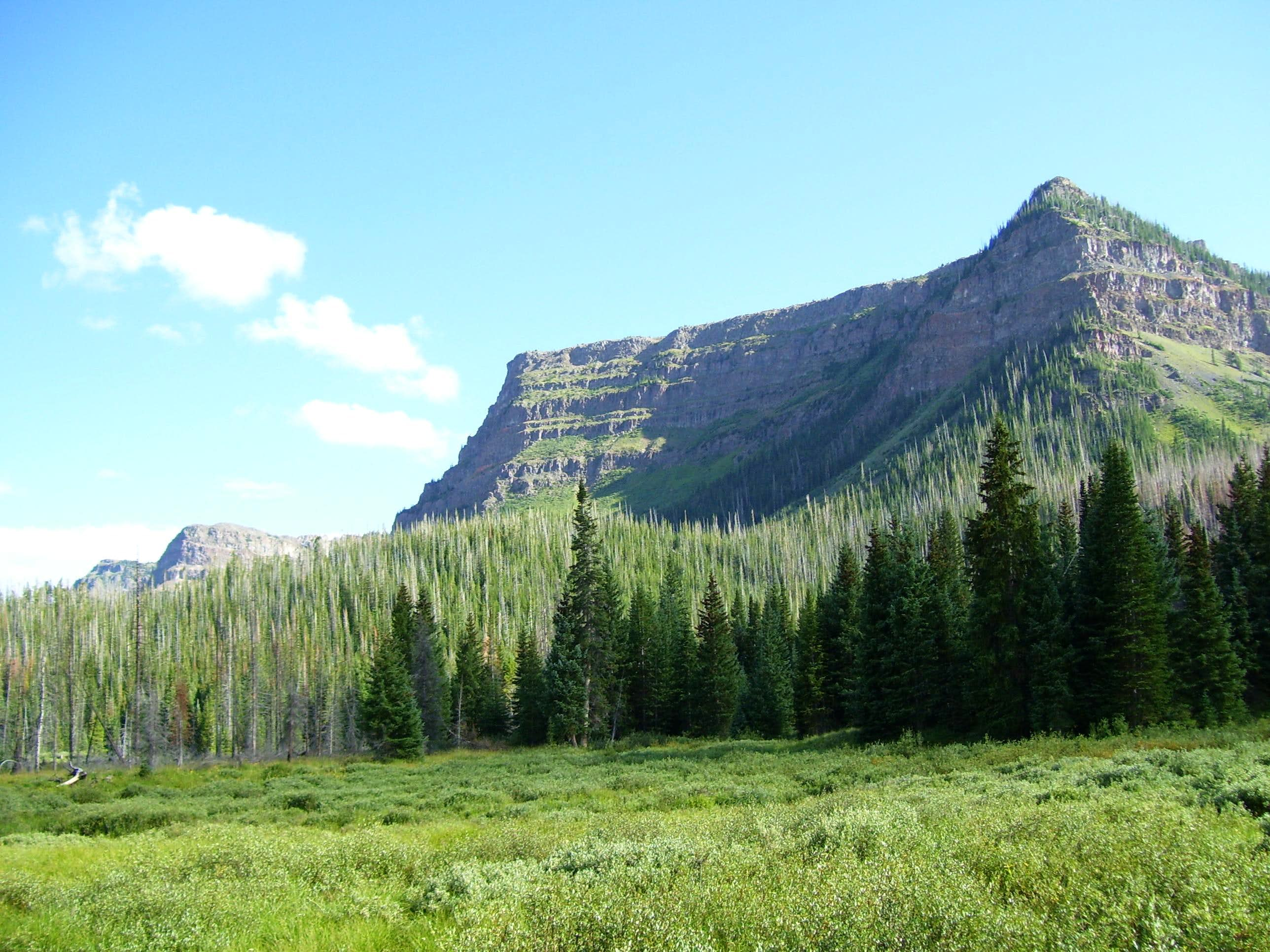 """Amphitheatre Peak""  via Trappers Lake"