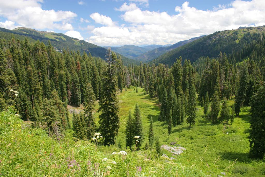 Marble Mountains Wilderness
