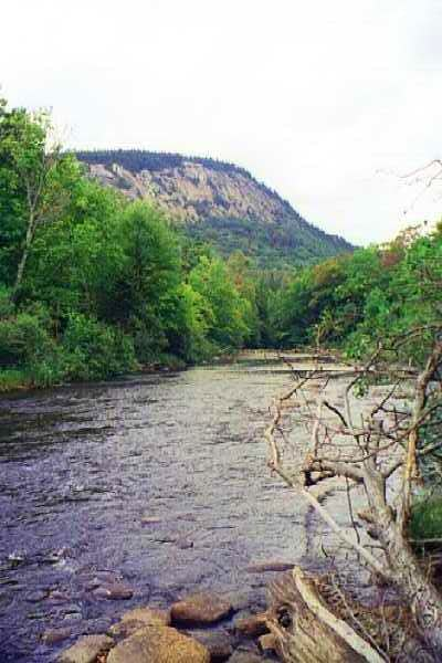 Sugarloaf Mtn. from the Cedar River