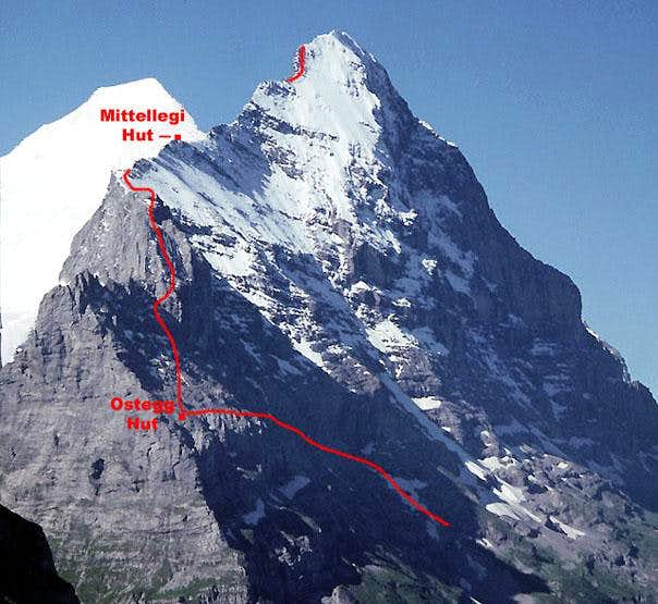 First Ascent of the Eiger\'s Mittellegi Ridge