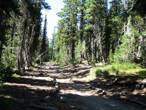 main trail