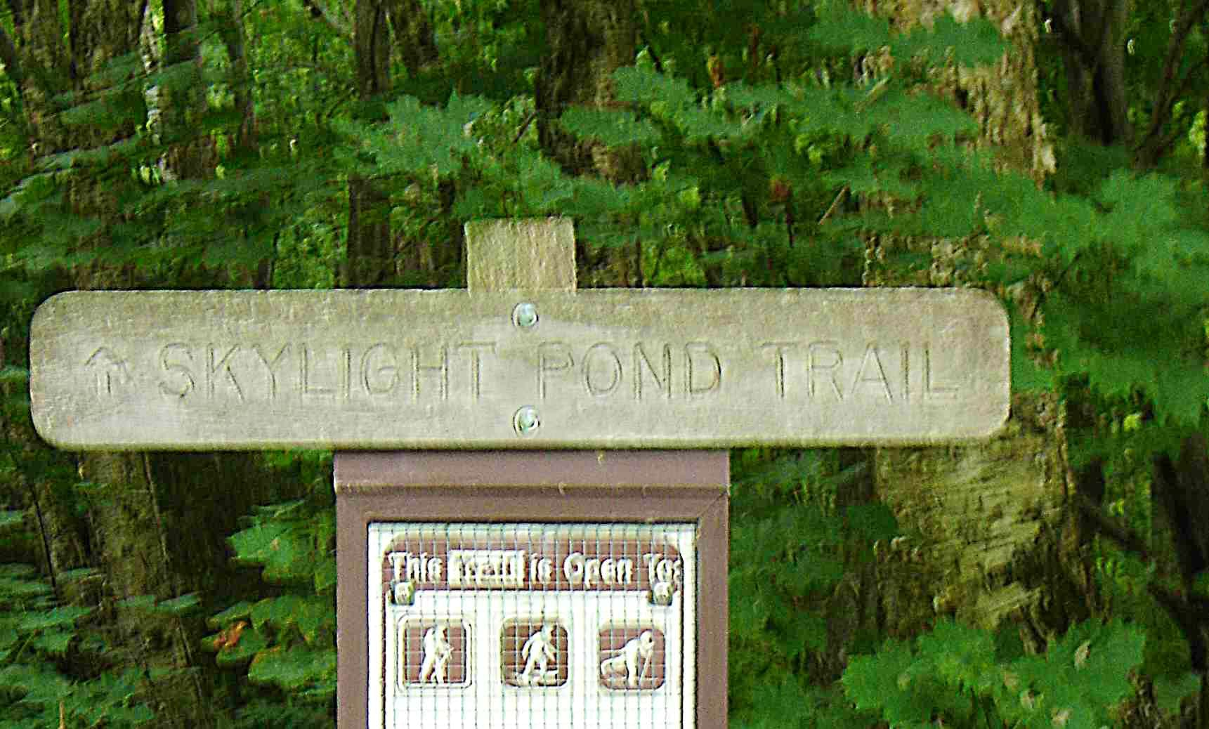 Skylight Trail/LT North and Back