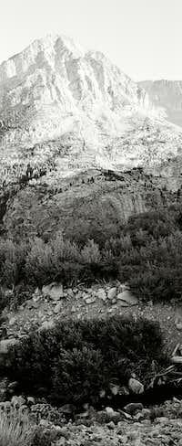 Lee Vining Canyon / Tioga Pass
