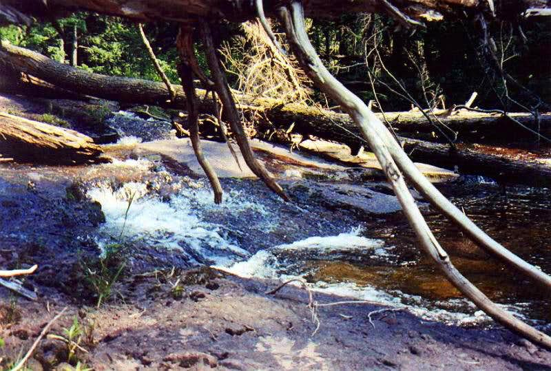 Trappers Falls